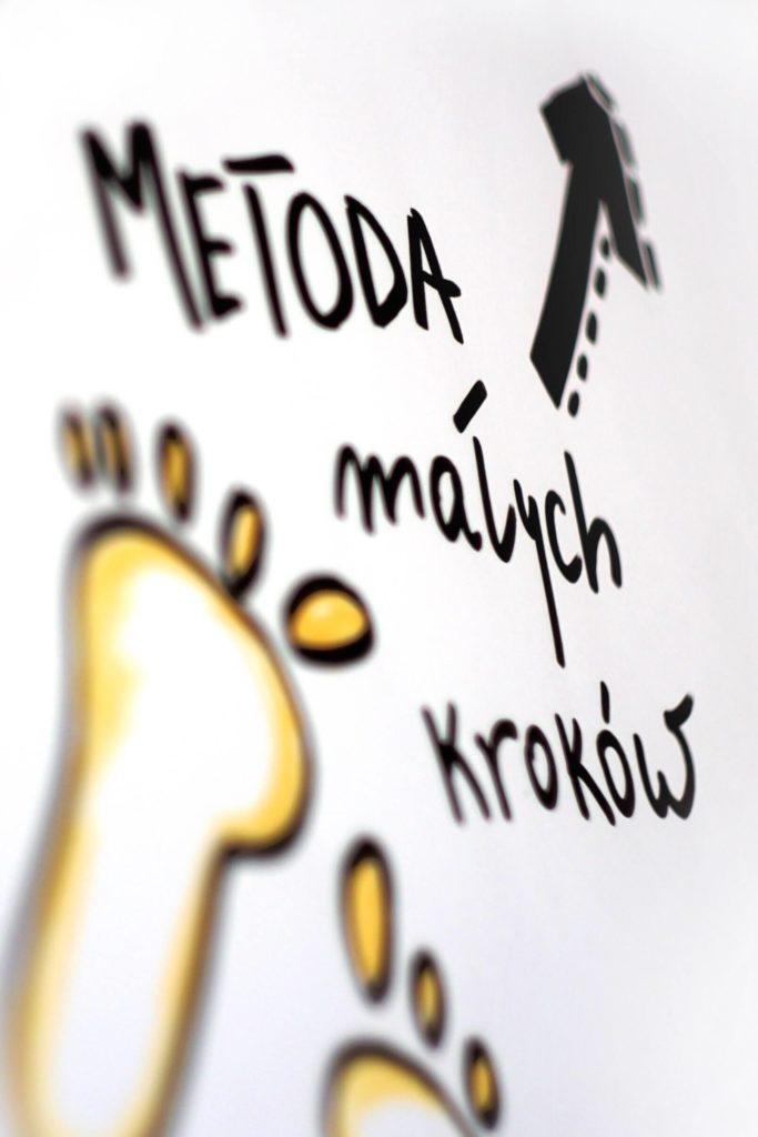 metoda-malych-krokow